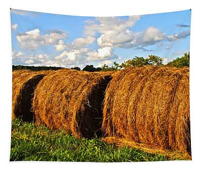 Hay Bale Close Up Tapestry