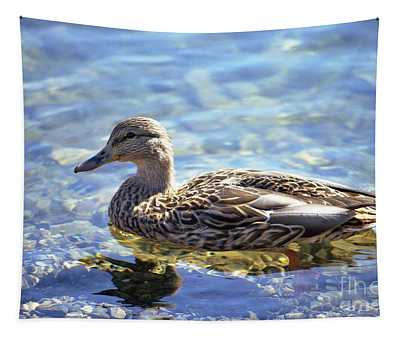 Hen's Reflection Tapestry