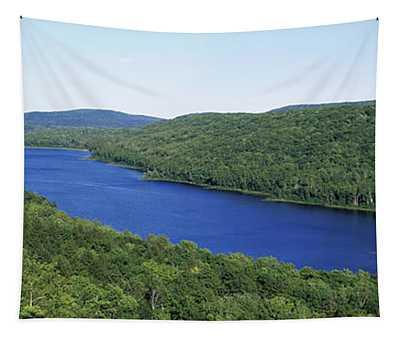 High Angle View Of A Lake, Lake Tapestry