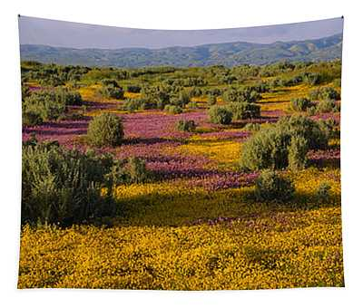High Angle View Of Wildflowers In A Tapestry
