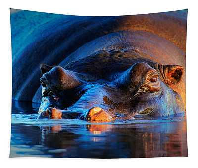 Hippopotamus  At Sunset Tapestry