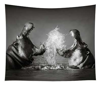 Hippopotamus Wall Tapestries