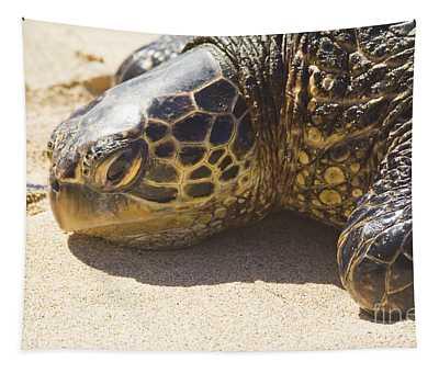 Honu - Hawaiian Sea Turtle Hookipa Beach Maui Hawaii Tapestry