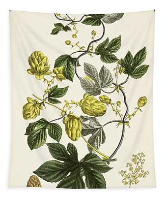 Hop Vine From The Young Landsman Tapestry