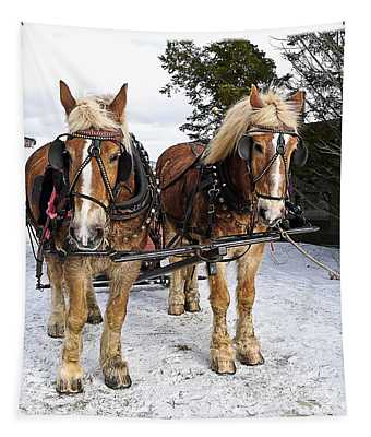 Horse Drawn Sleigh Tapestry