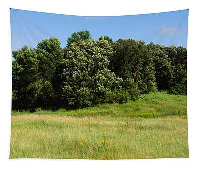 House In A Field, Otter Tail County Tapestry
