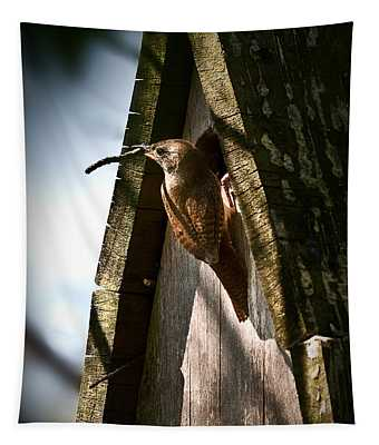 House Wren At Nest Box Tapestry