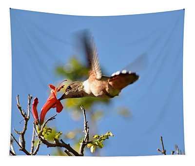 Hummingbird Feeding Tapestry