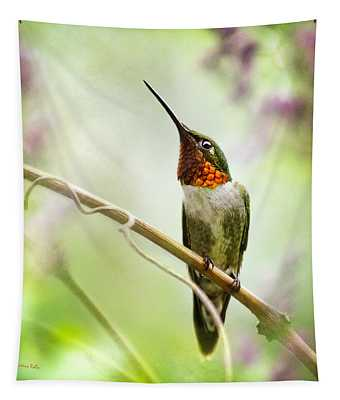Hummingbird Looking For Love Square Tapestry