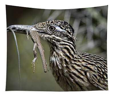 Greater Roadrunner Photographs Wall Tapestries