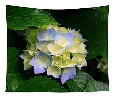 Hydrangeas Tapestry