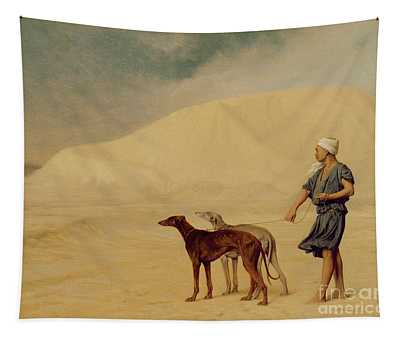 In The Desert Tapestry