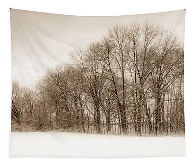 Indiana Winter At Freedom Park - Horizontal Tapestry