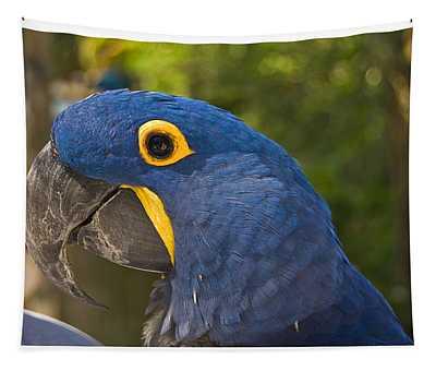 Indigo Macaw Tapestry