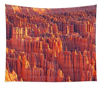 Inspiration Point, Bryce Canyon Tapestry