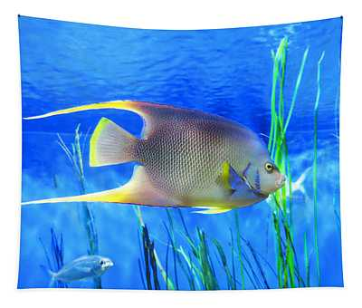 Into Blue - Tropical Fish By Sharon Cummings Tapestry