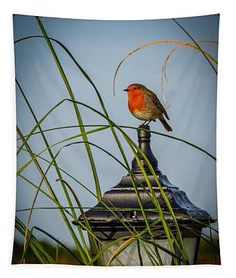 Irish Robin Perched On Garden Lamp Tapestry