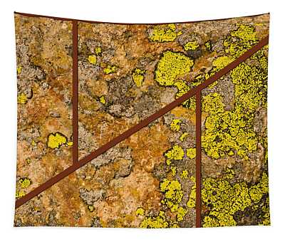 Iron And Lichen Tapestry