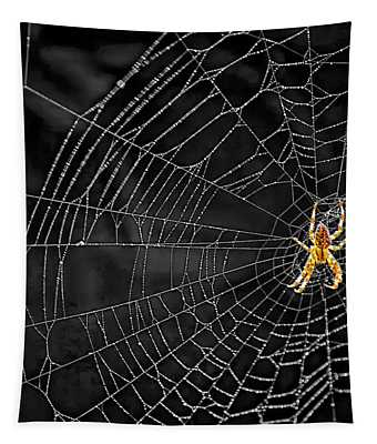 Itsy Bitsy Spider My Ass 3 Tapestry