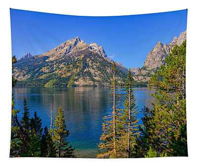 Jenny Lake Overlook Tapestry
