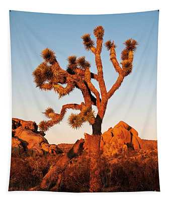 Tapestry featuring the photograph Joshua Tree At Sunset by Mae Wertz
