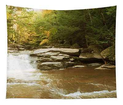Kaaterskill Falls Stream Tapestry