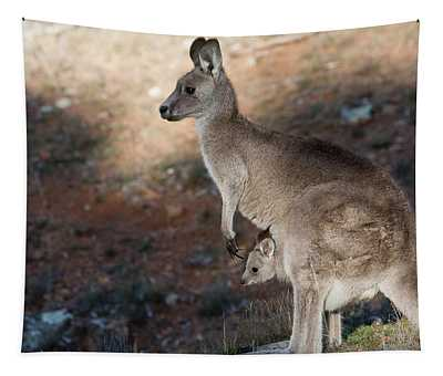 Kangaroo And Joey Tapestry