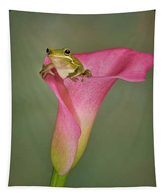 Tapestry featuring the photograph Kermit Peeking Out by Susan Candelario