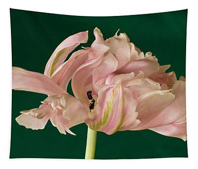 Lacey Tulip Tapestry