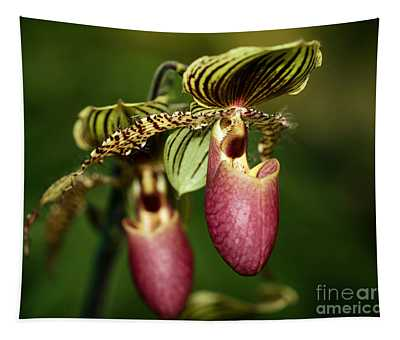 Lady Slipper Orchid Twins Tapestry