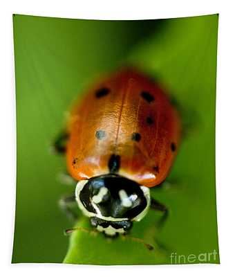 Ladybug On Leaf Tapestry
