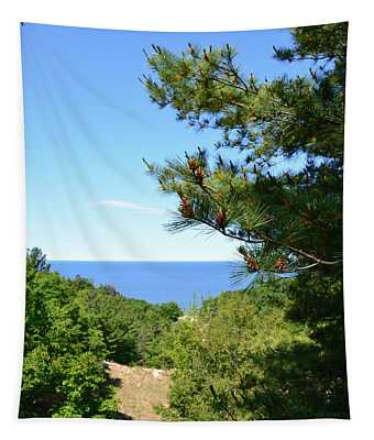 Lake Michigan From The Top Of The Dune Tapestry