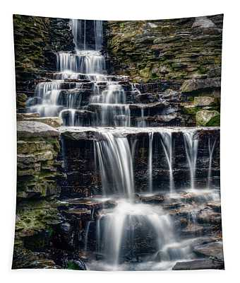 Lake Park Waterfall Tapestry