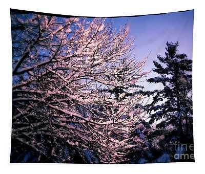 Last Peek Of Winter Sun Tapestry