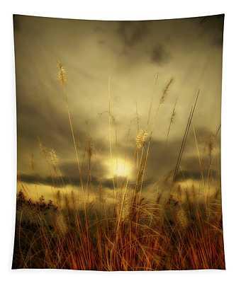 Late Summer Sun Through The High Grass Tapestry