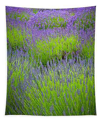 Lavender Study Tapestry