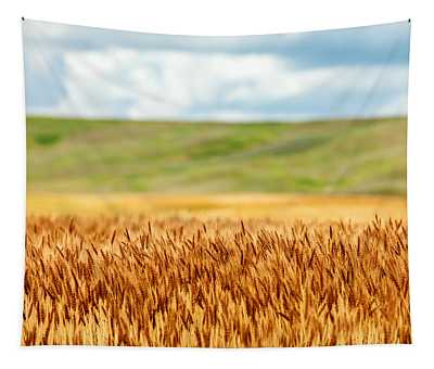 Layers Of Grain Tapestry