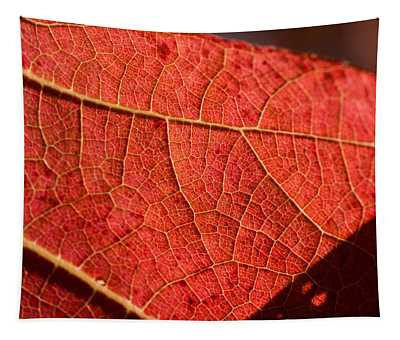 Leaf Venation Pattern 1 Tapestry