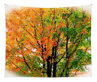 Leaves Changing Colors Tapestry