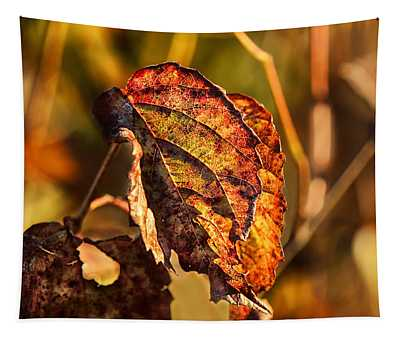 Leaving Autumn Tapestry