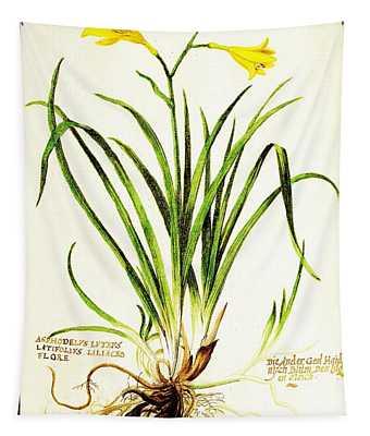 Lemon Daylily Botanical Tapestry