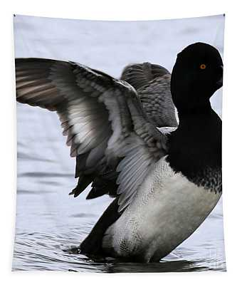 Lesser Scaup Duck  Tapestry