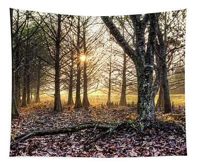 Light In The Trees Tapestry