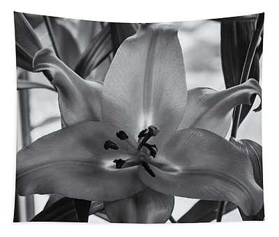 Lily 16 Tapestry