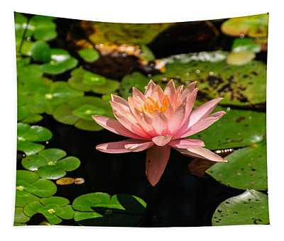 Lily Pad Tapestry