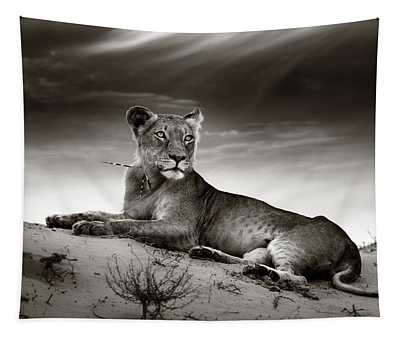 Lioness On Desert Dune Tapestry