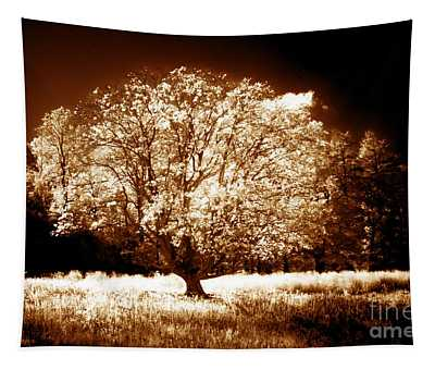 Lone Tree Aglow Tapestry