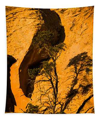 Lone Tree At Landscape Arch Tapestry