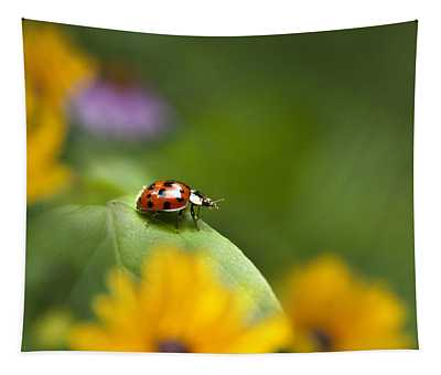 Tapestry featuring the photograph Lonely Ladybug by Christina Rollo