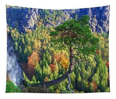 Lonely Tree In The Elbe Sandstone Mountains Tapestry